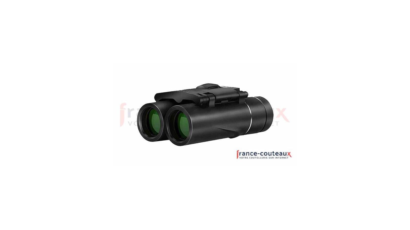 Lanterne camping à leds solaire et rechargeable 26 cm - 100 lumens